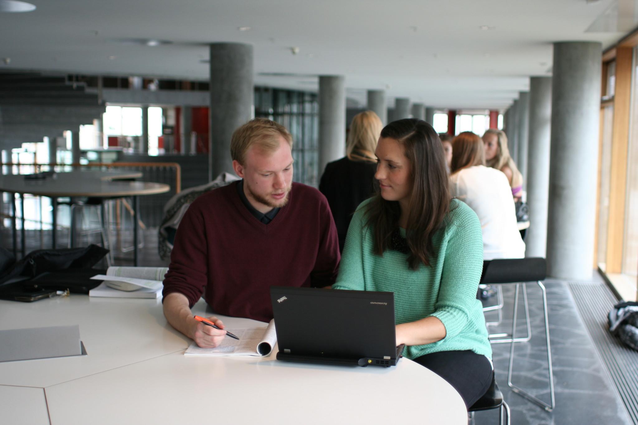 Ny hjemmeside hjælper studerende med at finde valgfag