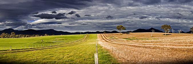 Er græsset Grønnere - bæredygtigt iværksætteri