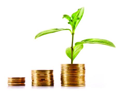 Coins and green plant isolated on white Trendsonline bæredygtig bundlinje