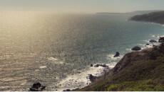 Havet Sea Tang Trendsonline