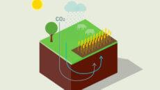 StandardBio, Bæredygtighed, Climate-KIC